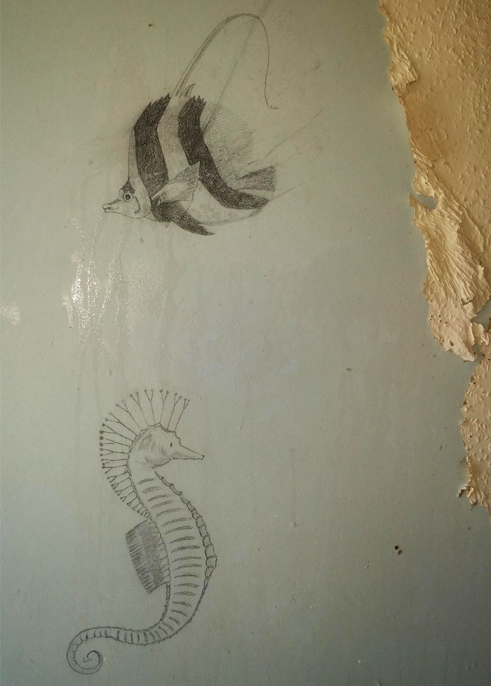 Found Some Nice Drawings Under The Wallpaper I'm Removing