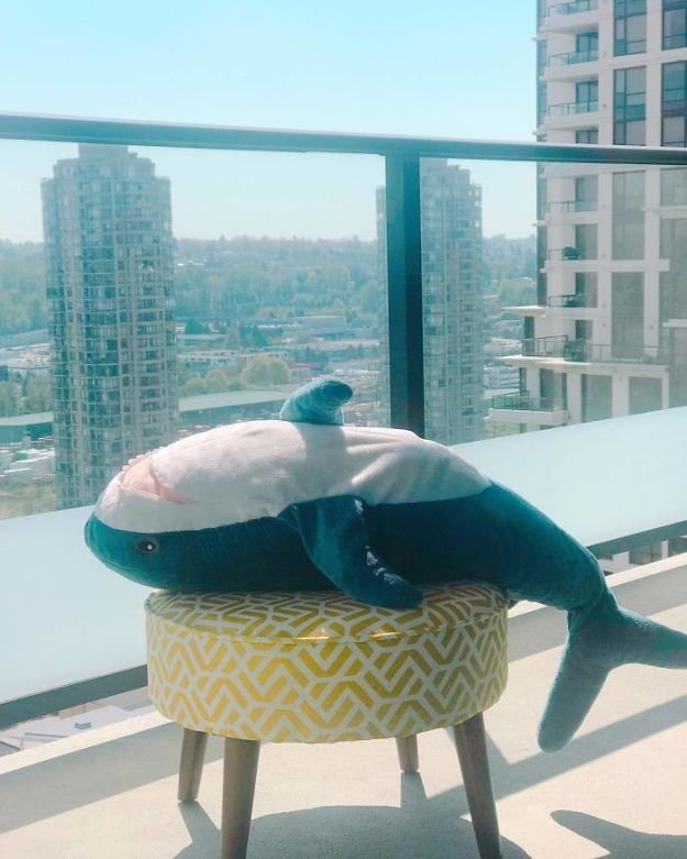 BiQCOjKhoaQ-png__700 IKEA Released An Adorable Plush Shark And People Are Losing Their Minds Over It Design Random