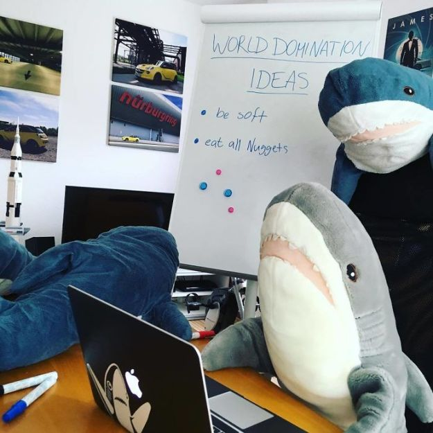 BkZ27O0BCwn-png__700 IKEA Released An Adorable Plush Shark And People Are Losing Their Minds Over It Design Random