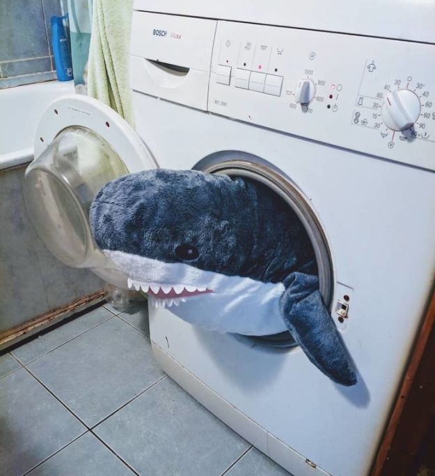 BmLZc0bBrfM-png__700 IKEA Released An Adorable Plush Shark And People Are Losing Their Minds Over It Design Random