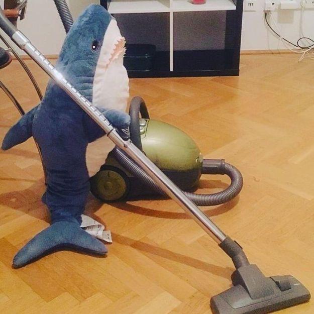 BpIP8GvB8a_-png__700 IKEA Released An Adorable Plush Shark And People Are Losing Their Minds Over It Design Random