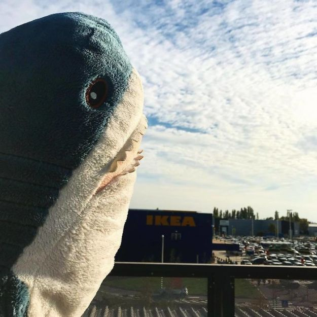 BpMcuL5D6CX-png__700 IKEA Released An Adorable Plush Shark And People Are Losing Their Minds Over It Design Random
