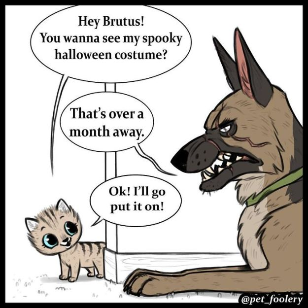 funny-animal-comics-adventures-dogs-pixie-brutus-pet-foolery-6-5bb2047a28d4d__700 These Hilariously Adorable Comics About Brutus And Pixie Will Instantly Make Your Day Design Random