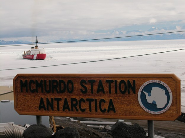 interesting-antarctica-facts-south-pole-5bd9acccd5211__700 27 Unbelievable Facts About Antarctica That Are 100% True Design Random
