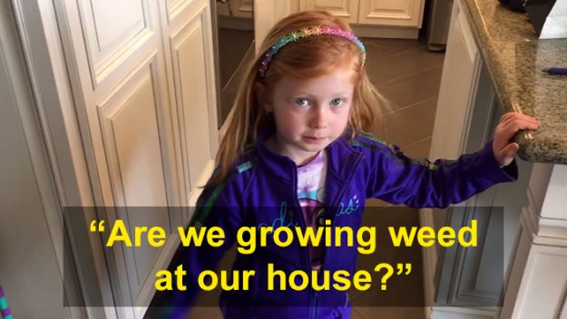schoolgirl-tells-teacher-father-growing-weed-13 Daughter Tells Her Teachers That Dad Is Growing 'A Ton Of Weed' At Home, And It Escalates Hilariously Design Random