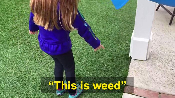 colegiala-cuenta-maestro-padre-creciendo-hierba-26