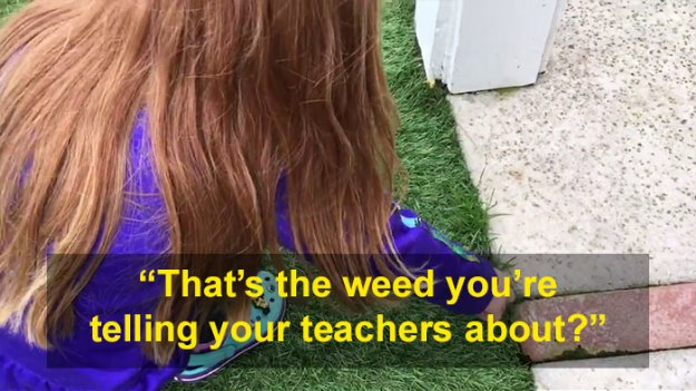 schoolgirl-tells-teacher-father-growing-weed-28 Daughter Tells Her Teachers That Dad Is Growing 'A Ton Of Weed' At Home, And It Escalates Hilariously Design Random