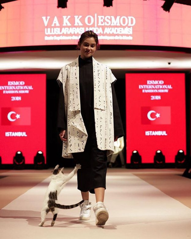 stray-cat-istanbul-fashion-show-vakko-esmod-5bd6be3e63999__700 Random Cat Crashes Fashion Show, Fights Models Design Random
