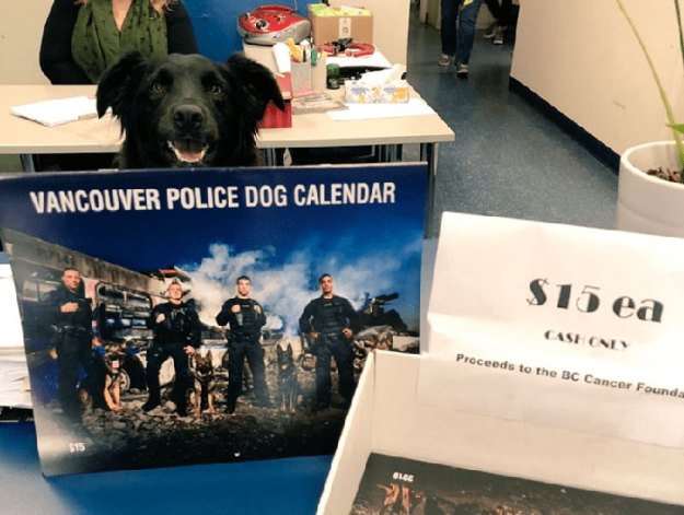 vancouver-police-department-charity-dog-calendar-2019-18-5bd16ef400bd4__700 Vancouver Police Canine Unit Just Released Their 2019 Charity Calendar And It's Badass Design Random