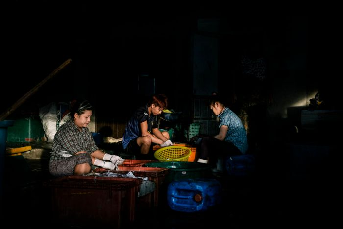 Burmese Migrants Working Illegally At A Thai-Owned Shrimp Processing Plant In Samut Sakhon, Thailand