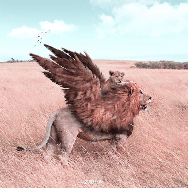 Lion-5bdb8e1c0f9e6__700 Here's How I Imagine Animals Behave When You Aren't Looking (10+ Pics) Design Random