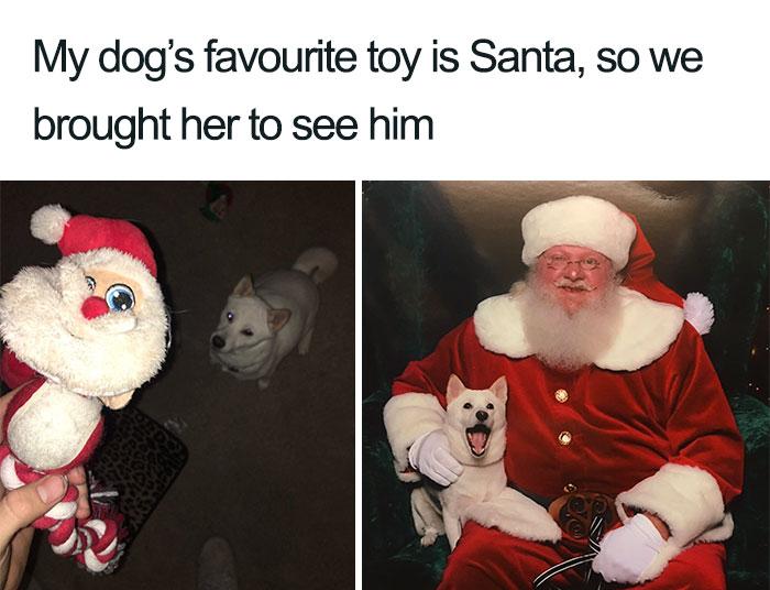 50 Hilarious Christmas Memes Bored Panda