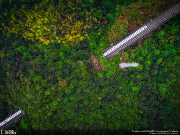 national-geographic-nature-photographer-of-the-year-2018-winner-122-5c0a368198896__880 50 Of The Most Incredible Photos Of The National Geography Photo Contest Of 2018 Design Photography Random