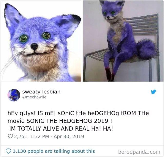 Sonic Memes