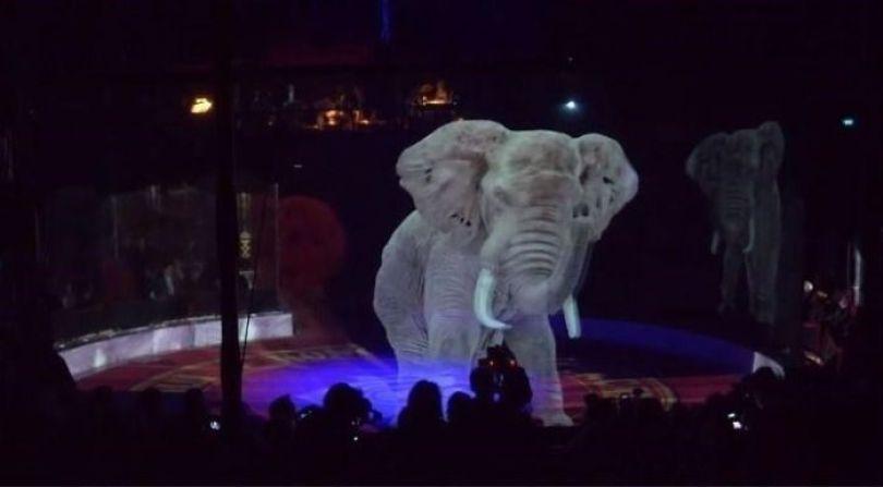 animal holograms circus roncalli germany 3 5cf652bb2df48  700 - Circo alemão usa hologramas em vez de animais vivos
