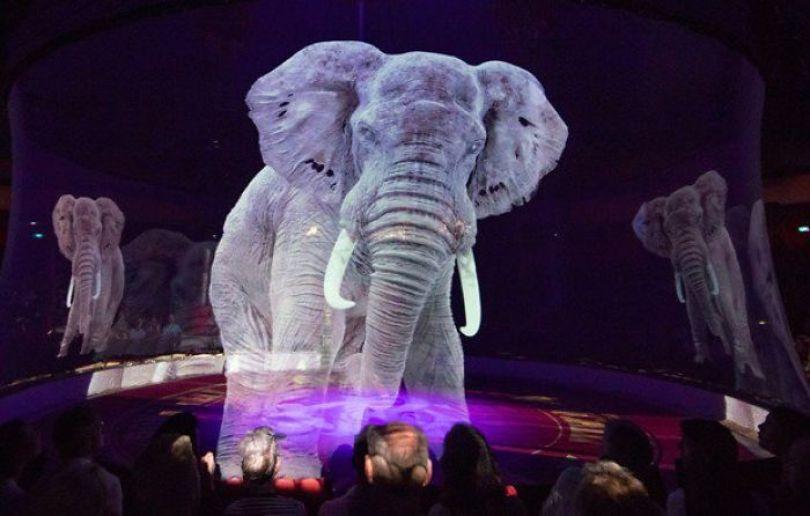 animal holograms circus roncalli germany 5 5cf652bf48b4c  700 - Circo alemão usa hologramas em vez de animais vivos
