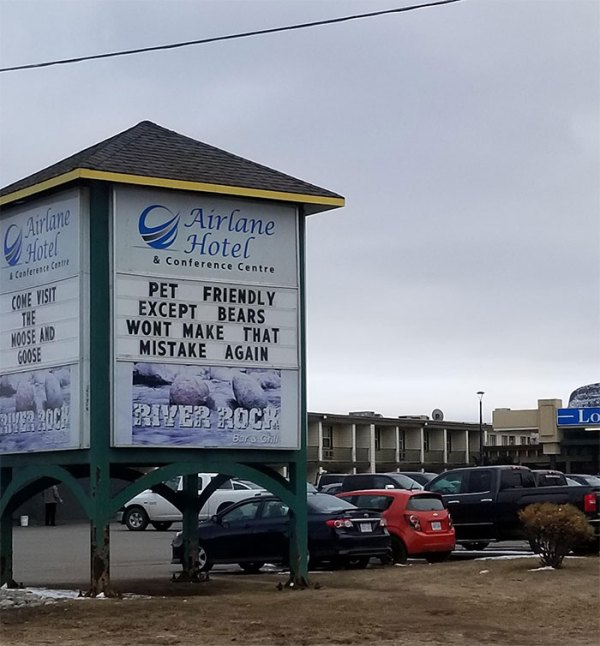 The Things You See In A Northern Canadian Town