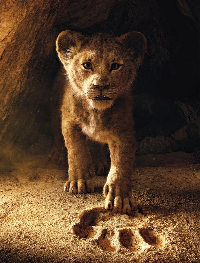 lion king live action baby simba bahati dallas zoo 11 - Conheça a Leoa de verdade que deu origem ao pequeno Simba