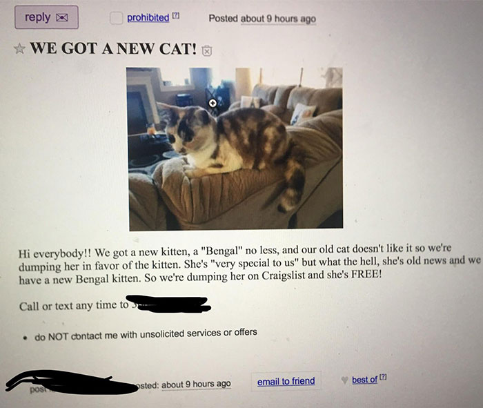 30 Idiot People Who Dont Deserve To Own A Pet 16