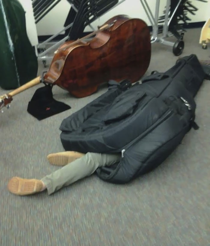 Here We See A Wild Bass Player, Sleeping Soundly In Its' Cocoon