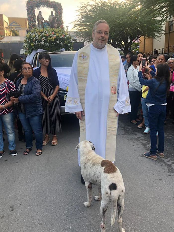 68456557 701611860287279 2782742614254813184 n 5daf9004eb1c9  700 - O que fez o cachorro ao ver a porta da igreja aberta?