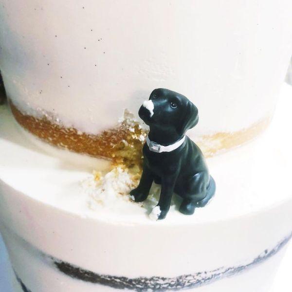 Cakes-Design-Kake-Darci