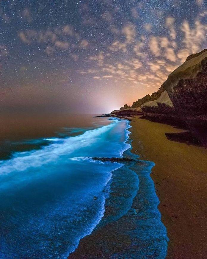 Bioluminescent Phytoplankton In The Persian Gulf