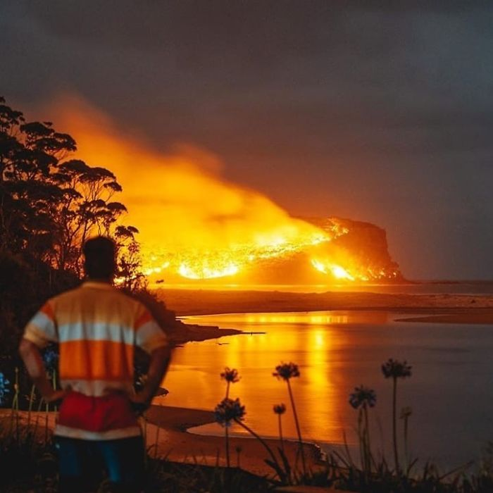 6 Deaths. 2.2 Million Hectares Burnt. 680 Homes Destroyed. Countless Animals Lost. And No End In Sight...