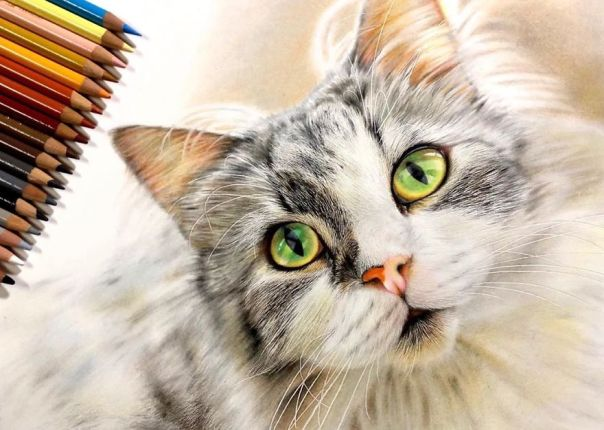 Japanese Illustrator Makes Hyper Realistic Cat Illustrations That Will Probably Take Your Breath Away