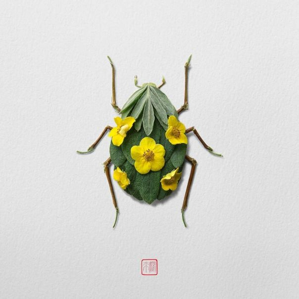 Insects-Flower-Arragements