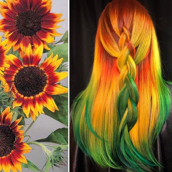 Hairdresser Is Inspired By Nature To Create Colored Hair And The Result Is Incredible