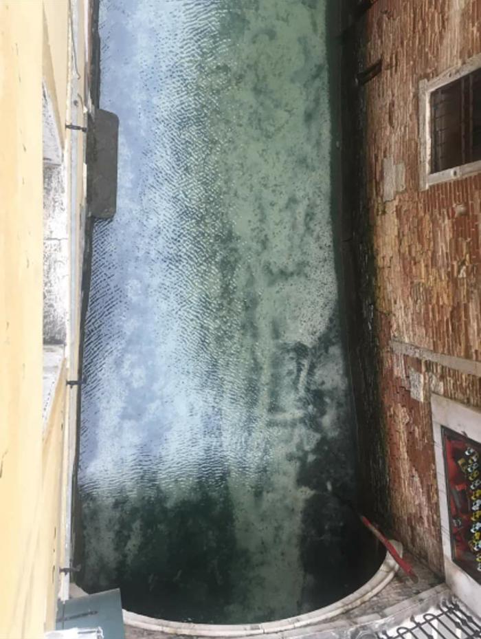 fish seen in clear venice canals after coronavirus lockdown 3 5e71e15057708  700 - Vídeo mostra Veneza completamente vazia