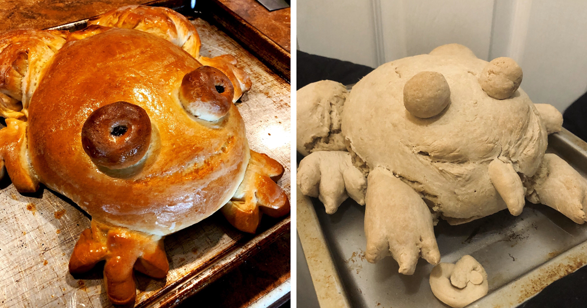 30 People Share Their Attempts At The Latest Trend – Baking Frog Bread