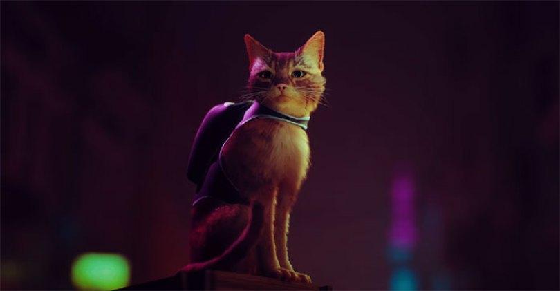 playstation 5 ps5 cybercity stray cat game 5ee712b198648  700 - Novo jogo para PS5 permite que você seja um gato em cidade cybernetica