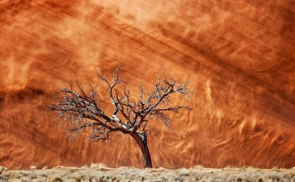 Dune On Fire, Namibia