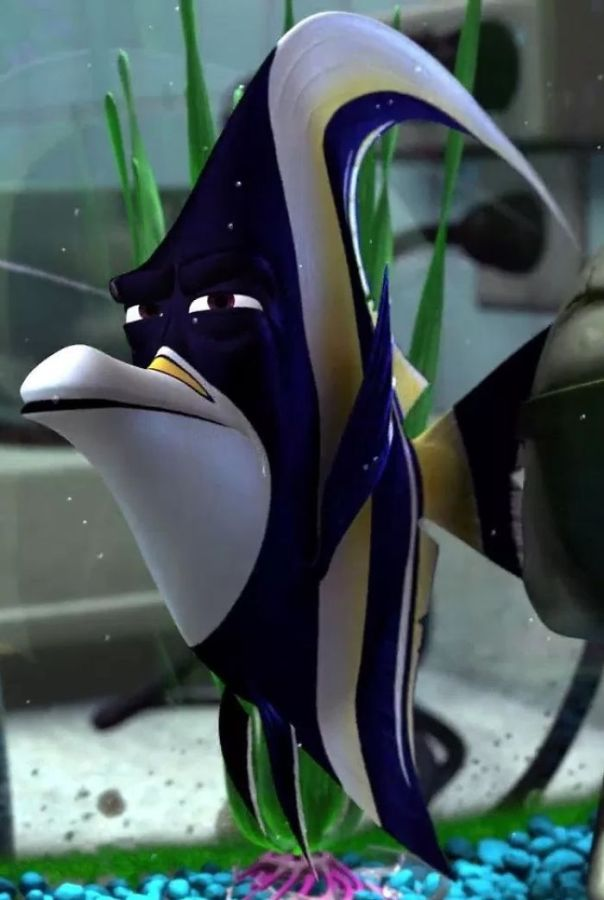 In Finding Nemo (2003), Gill Is A Moorish Idol. This Species Is Known To Not Handle Captivity Well, So Him Being The One Who Constantly Comes Up With Escape Plans Makes Sense