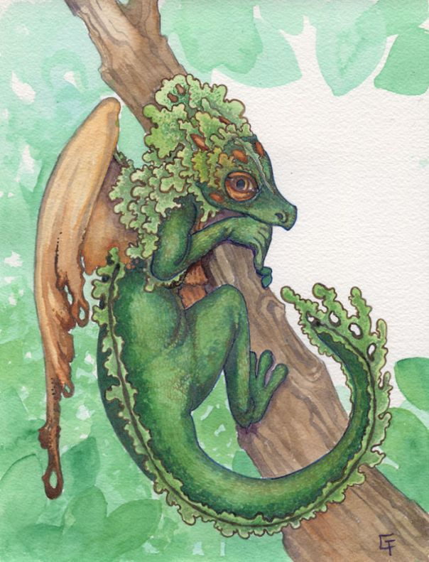 Tufted Moss Dragon