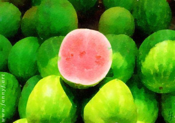 Big Melons On Display