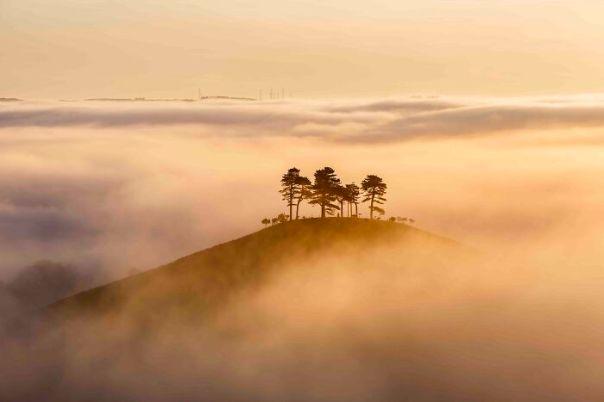 Classic View Commended: Mark Whitmarsh, 'Misty Sunrise, Colmer's Hill', Dorset