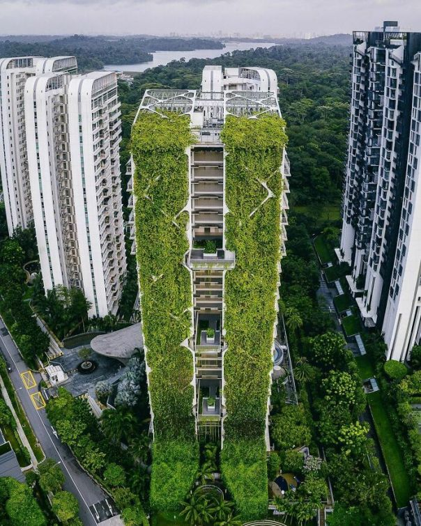 This Apartment Building In Singapore