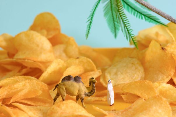 The Chips Desert