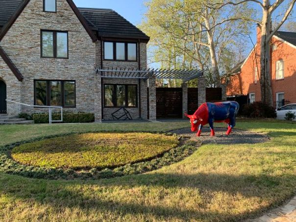 Spider Cow (In Front Of A $1.9m House)