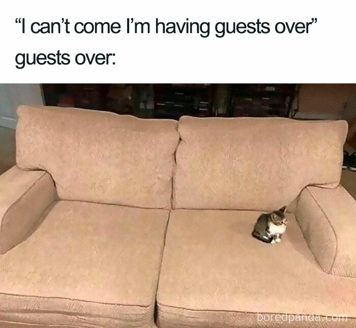 Follow @introvert_memes__ For More Relatable Memes • • • • • #introvert #introvertlife #introvertproblems #introvertstruggles #introvertsunite #growingupshy #introverts #anxiety #socialanxiety #socialanxietyproblems #introverts #highlysensitive #overthinking #overthinker #overthink #funnymemes #funnyquotes #memes #meme #memesdaily #funnymemesdaily #infp #infj #intj #intp #isfp #istj #istp #loner