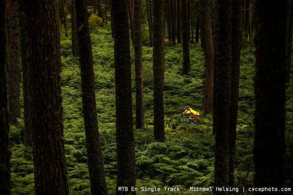 Mtb En Single Track - Michael Helsing