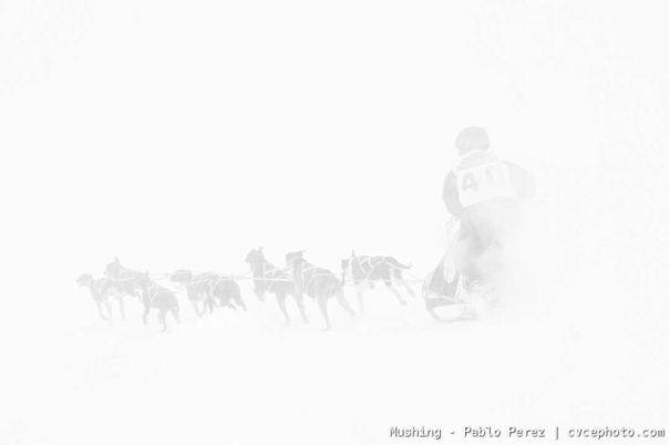 Mushing - Pablo Perez