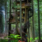 17 Of The Most Amazing Treehouses From Around The World Bored Panda