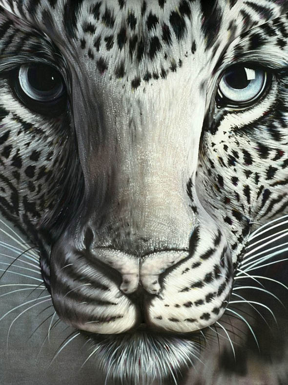 optical illusions pictures # 29