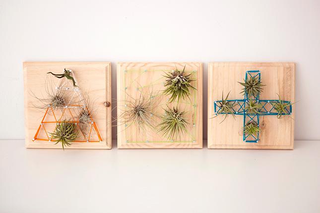 un esempio di come un piccolo giardino verticale possa trasformarsi in un pezzo d'arte a tutti gli effetti