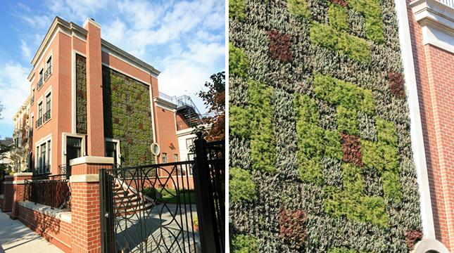 Un palazzo con una parete tutta verde