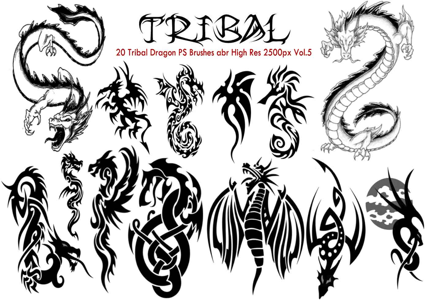 Tribal Dragon Ps Brushes Vol 5